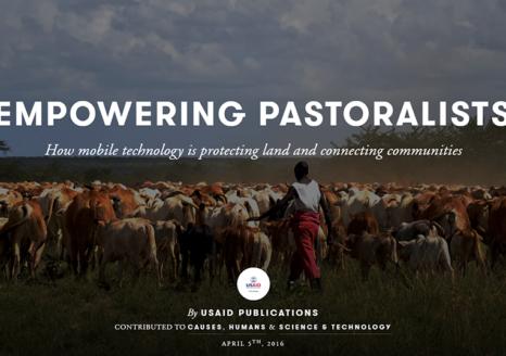 Pastoralist herding cattle in Africa