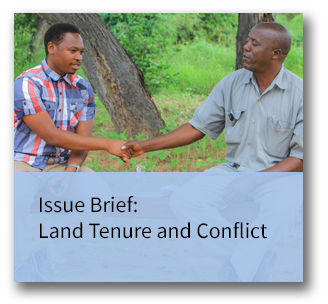 Land Tenure and Conflict Issue Brief