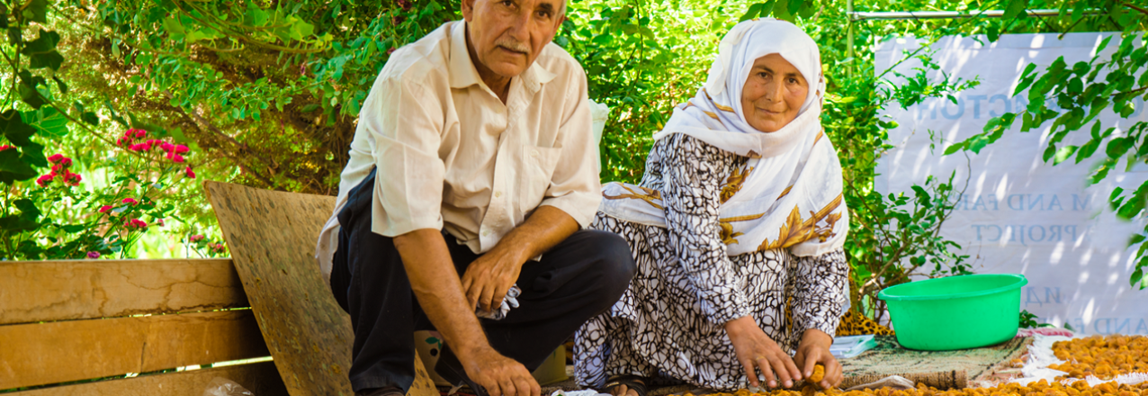 A husband and wife in Tajikistan's Khatlon province dry apricots on their family farm