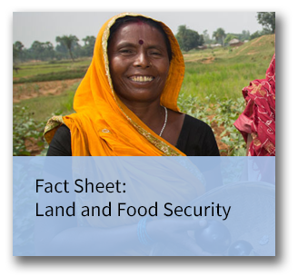 Fact sheet on land and food security
