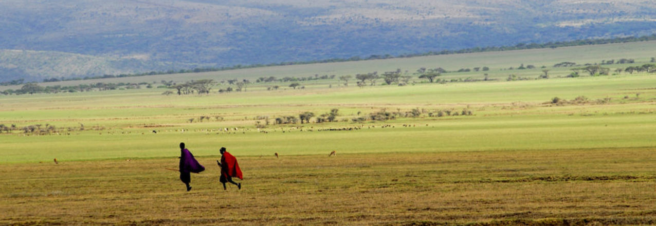 Masai warriors going home