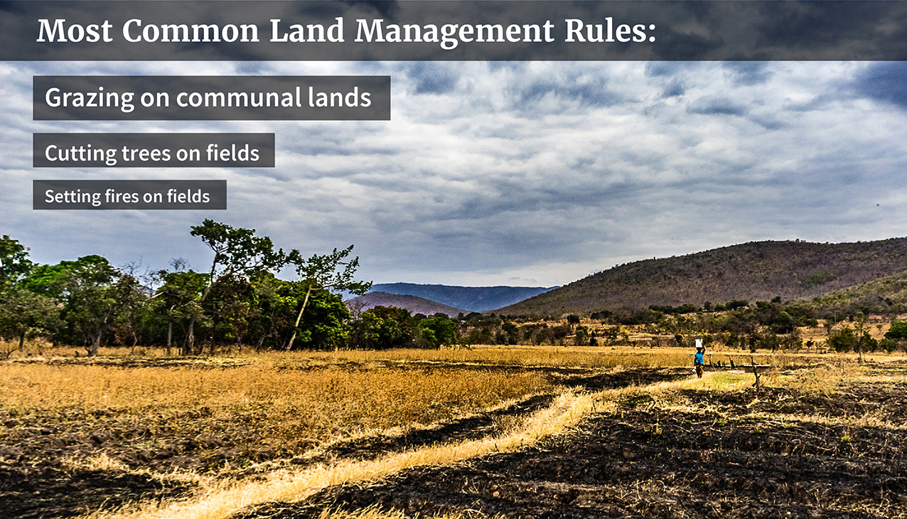 land use and control in zambia Own only 1% of the land (s ofa, 2011) therefore, improving women's access to and control over land is crucial to socio-economic development of africa.
