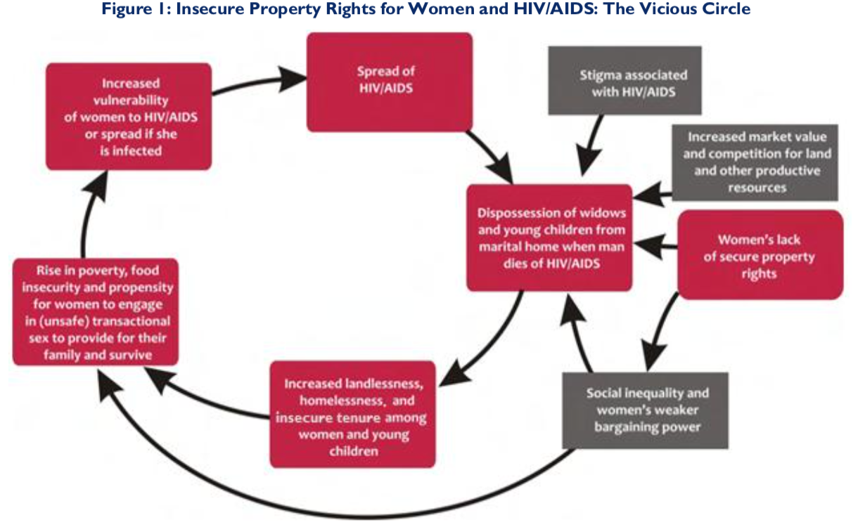 Land Tenure, Property Rights, and HIV/AIDS | LandLinks