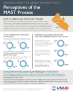 Perceptions of the MAST Process