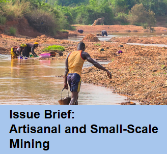 Issue brief on land tenure, property rights, and economic growth
