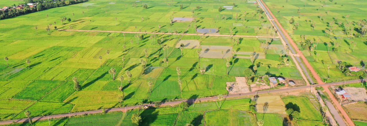 Tang Krasang irrigation system