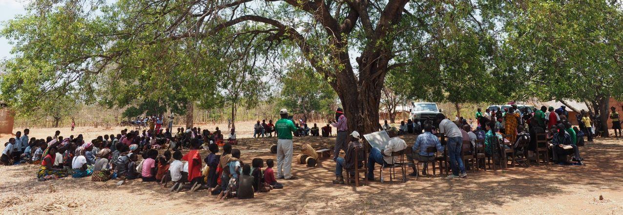 community meeting under a tree